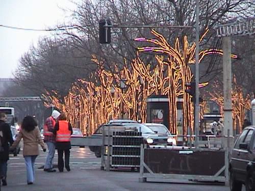 Lit trees on Unter den Linden Str.